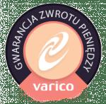 Logo Gwarancja Odtowrzenia Danych